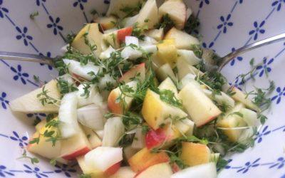 Appel-venkel salade