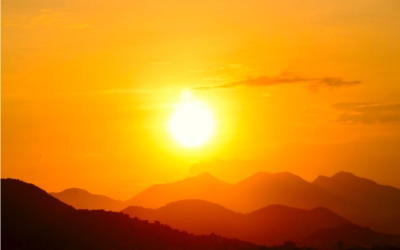 Waarom je zelfs in de zomer vitamine D zou moeten slikken